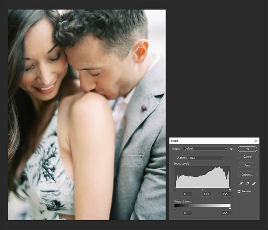 Learn photography with Fujifilm, How to Read a Histogram
